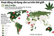 [Infographics] Hoạt động sử dụng cần sa trên toàn thế giới