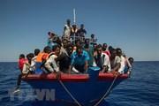 EU xúc tiến thành lập một liên minh mới với các nước Arab