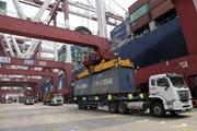 """""""Bức màn sắt kinh tế"""" Trung-Mỹ sẽ dẫn đến sự chia rẽ thế giới?"""