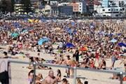 Nắng nóng kỷ lục, vượt quá 49 độ C tại miền Nam Australia