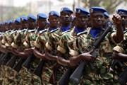 Lực lượng Mỹ và châu Phi tập trận quy mô lớn ở khu vực Sahel