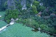 [Photo] Mùa sen ở chùa Bích Động - Vẻ đẹp thần tiên khó cưỡng