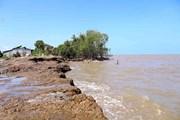 [Photo] Kiên Giang: Tuyến đê biển huyện An Minh bị sóng biển đánh vỡ