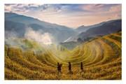 [Photo] Rực rỡ mùa vàng trên những ruộng bậc thang ở Mù Cang Chải
