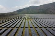 [Photo] Cận cảnh nhà máy điện Mặt Trời Sao Mai ở An Giang