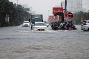 [Photo] Hải Phòng: Mưa lớn gây ngập úng trên nhiều tuyến phố