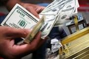 Công an thông tin chính thức vụ nữ phóng viên tống tiền 70.000 USD