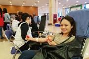 [Photo]: Hội Thanh niên vận động 500.000 đơn vị máu