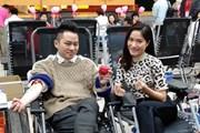 Ca sỹ Tùng Dương hào hứng hiến máu trong Lễ hội Xuân Hồng