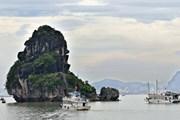 Di sản thế giới Vịnh Hạ Long: Nguồn lực và lợi thế của Quảng Ninh