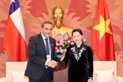 Chủ tịch Quốc hội Nguyễn Thị Kim Ngân tiếp Chủ tịch Hạ viện Chile