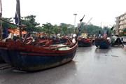 Kiểm tra công tác phòng chống bão số 3 tại Thanh Hóa