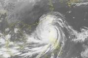 Siêu bão Mangkhut đã đi vào Biển Đông và thành bão số 6