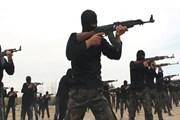 Mỹ: JeM, LeT tiếp tục là mối đe dọa đối với khu vực Nam Á