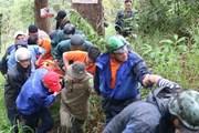 Lâm Đồng: Một du khách nước ngoài tử nạn ở thác Datanla Đà Lạt