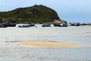Ninh Thuận: Đất cát bồi lấp, vịnh Vĩnh Hy ngày càng bị thu hẹp