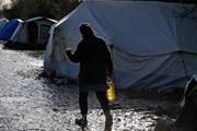 Pháp di dời 1.800 người di cư khỏi trại tạm cư ở miền Bắc