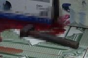 Truy bắt nhanh các đối tượng giết người tại thành phố Lào Cai