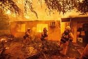 Mỹ: Thành phố San Francisco chìm trong khói độc do cháy rừng