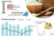 Xuất khẩu gạo dự kiến thu về 3 tỷ USD trong năm 2018