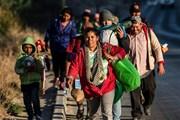 Tòa án Mỹ cân nhắc đình chỉ sắc lệnh nhập cư mới của Tổng thống Trump
