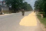 Bổ sung năm tuyến Quốc lộ vào quy hoạch phát triển giao thông