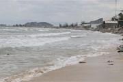Xuất hiện áp thấp nhiệt đới xa, nhiều vùng biển nguy hiểm