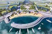 Nhiều ý kiến xung quanh dự án hơn 1.700 tỷ đồng lấn biển ở Lý Sơn