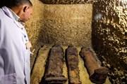 Ai Cập phát hiện khu mộ cổ lớn từ thời vương triều Ptolemy