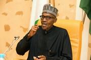Các nhà lãnh đạo Tây Phi thảo luận các vấn đề quan trọng của khu vực