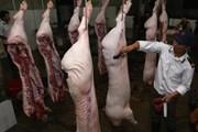 Một năm sau 'giải cứu,' giá thịt lợn hơi trong nước tăng cao kỷ lục