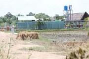 TP.HCM kiểm tra vi phạm trật tự xây dựng tại khu dã ngoại Green Park