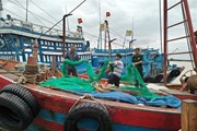 Các tỉnh, thành Bắc bộ từ Nghệ An trở ra chủ động ứng phó với bão số 6