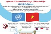[Infographics] Việt Nam là thành viên tích cực, có trách nhiệm của LHQ