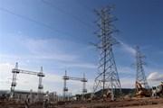 Xây nhà máy điện: Xu hướng phát triển nguồn năng lượng tái tạo