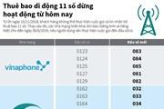 [Infographics] Thuê bao di động 11 số dừng hoạt động từ hôm nay