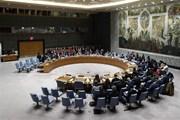 Liên hợp quốc gia hạn một năm cho hoạt động viện trợ tại Syria