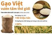 [Infographics] Sắp công bố Logo thương hiệu quốc gia gạo Việt Nam