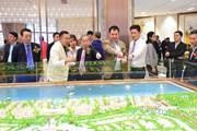 Gần 370 triệu USD đầu tư xây khu du lịch quốc tế Minh Viễn-Lăng Cô