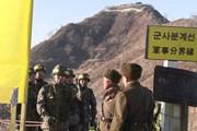 Chuyên gia Hàn: Nên phát triển DMZ thành biểu tượng hòa bình thế giới