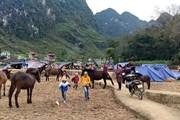 Cao Bằng: Người dân dựng lán ngủ ngoài đồng sau động đất thứ 2