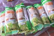 Hình ảnh làng nghề miến gạo Thăng Long ở Thanh Hóa vào vụ Tết