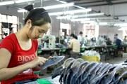 Gần 40% người lao động sống kham khổ vì tiền lương thấp