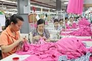 ILO tài trợ nghiên cứu 5 đề xuất cải thiện các vấn đề về lao động
