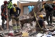 Mexico xây tượng đài tưởng nhớ các nạn nhân thiệt mạng do động đất