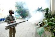 Thành phố Hồ Chí Minh: 1 người tử vong do sốt xuất huyết