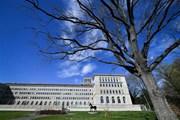 Quan chức Trung Quốc: WTO đã lỗi thời, cần phải có những cải tổ