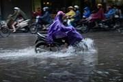 Trung Bộ có mưa to và dông, Bắc Bộ sáng và đêm trời lạnh