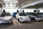 Chính quyền Mỹ dự định rút lại ưu đãi thuế cho tất cả xe điện