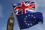 Chính phủ Anh hoãn cuộc bỏ phiếu về thỏa thuận Brexit tại Quốc hội